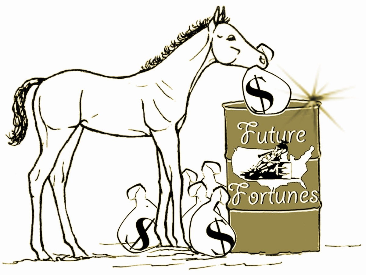Future Fortunes bonus money